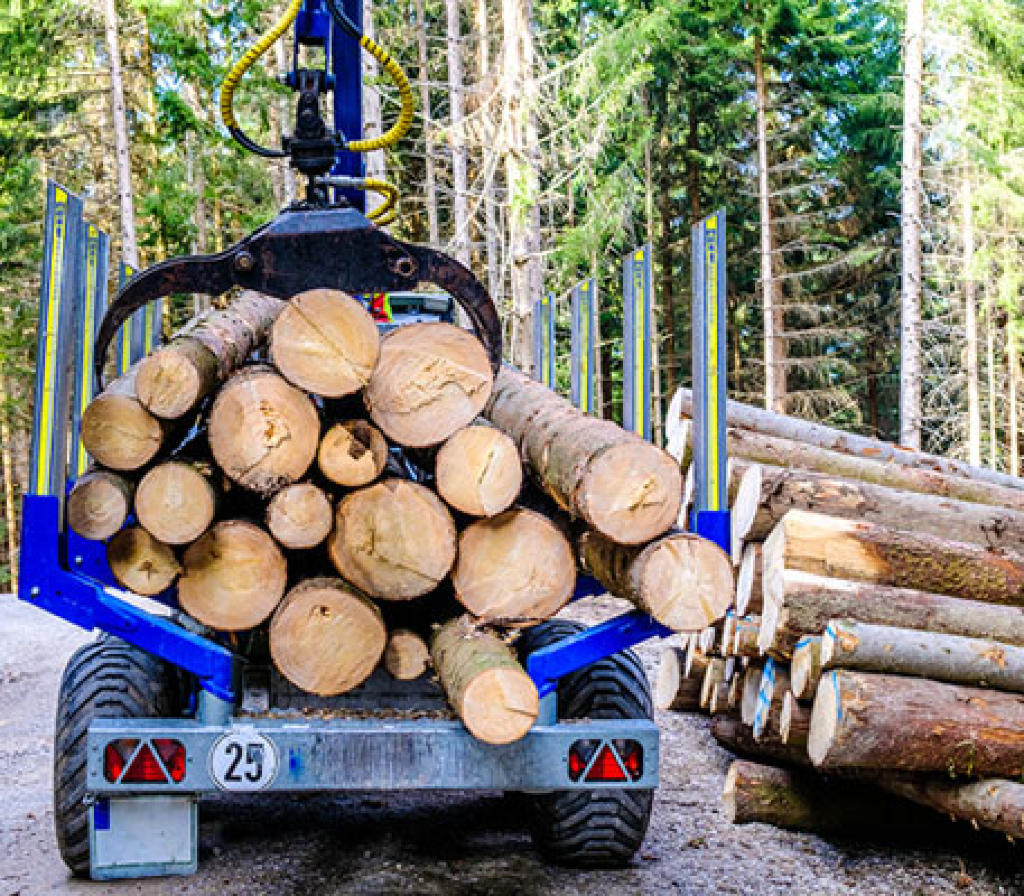 林业&农业